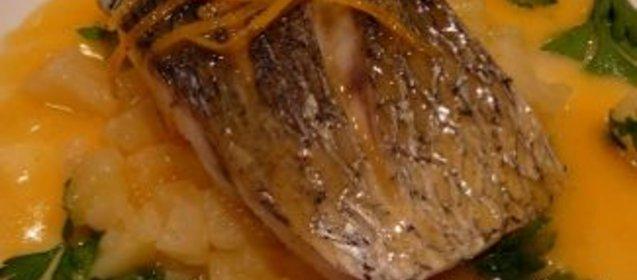 Скумбрия тушеная в мультиварке рецепты
