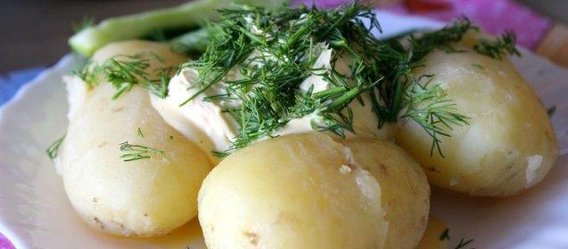 Пошаговые фото рецепты со сметаной