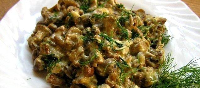 Простые рецепты из грибов с фото