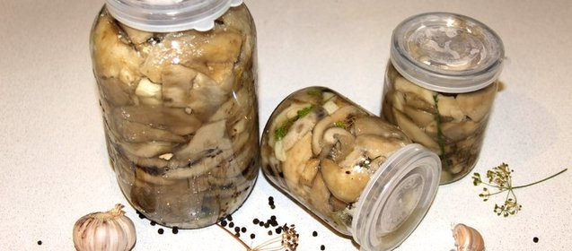 Засолка грибов пошаговый рецепт с фото