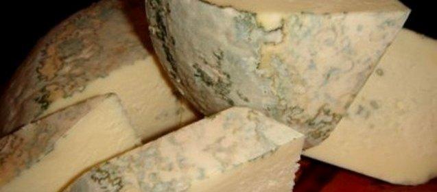 Рецепт сыр с плесенью в домашних условиях
